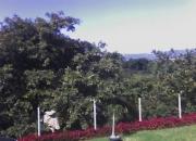 Casa con PISCINA con TERRENO GRANDE en San Cristobal