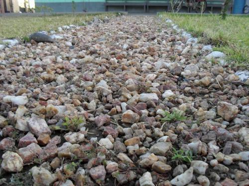 Venta de piedras decorativas para jardin consejos prcticos para pintar piedras piedra y bolo - Venta de piedras para jardin ...
