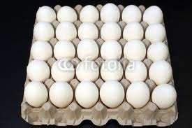 Venta de cartones de huevos por mayor y menor