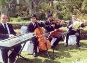 Vioines para bodas Guatemala