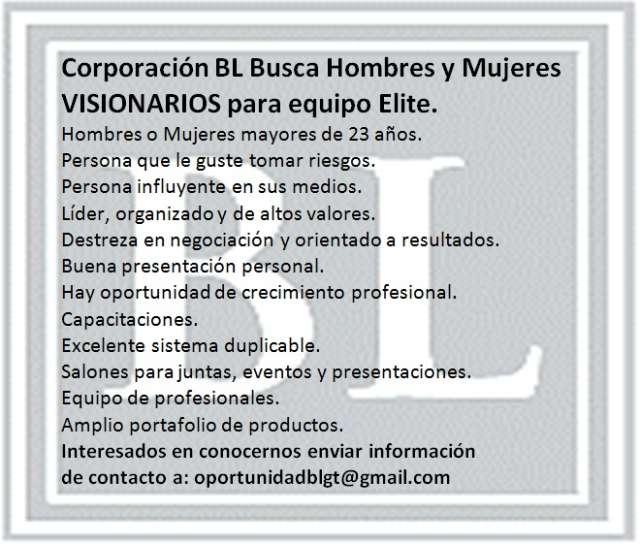 Oportunidad mercadeo ingresos extras marketing consultores