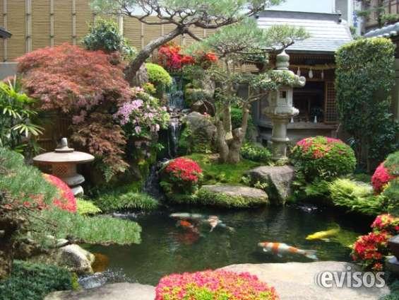 Jardinización y paisajismo para residencias, hoteles y cetros recreativos