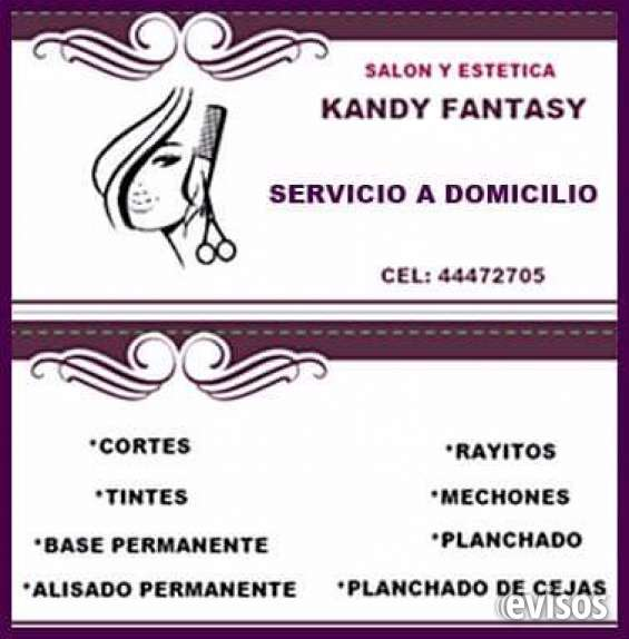 Servicios de salon de belleza a domicilio