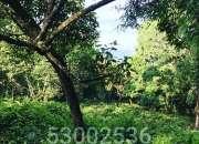 Vendo terreno residencial 6000 varas2  km 16.5 Carretera a El Salvador