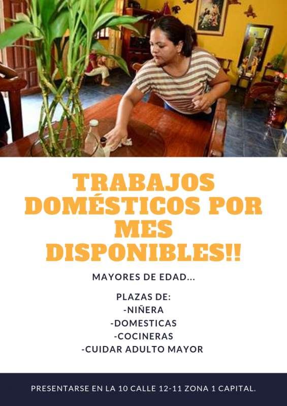 Trabajos en casa por mes de domesticas y niñeras